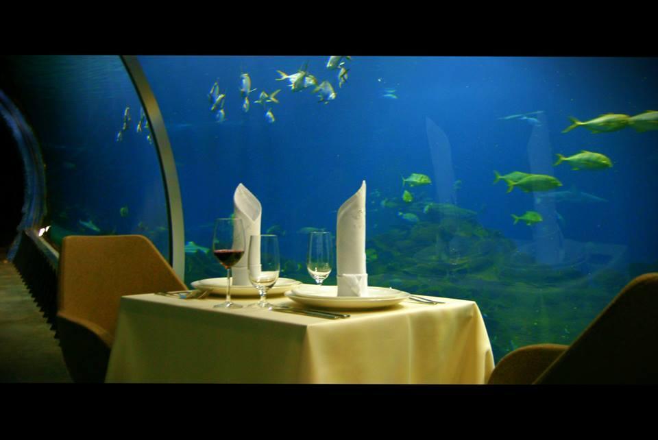 Podwodne Walentynki